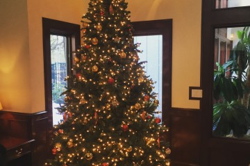 Christmas Tree at Stoneridge Townhomes